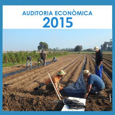Auditoria 2015_portada